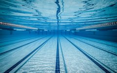 Girls swimming and diving dominates Glenbrook South