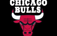 Future looks bright for struggling Bulls