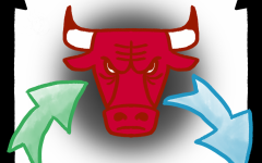 Bulls' trades forecast a bright future
