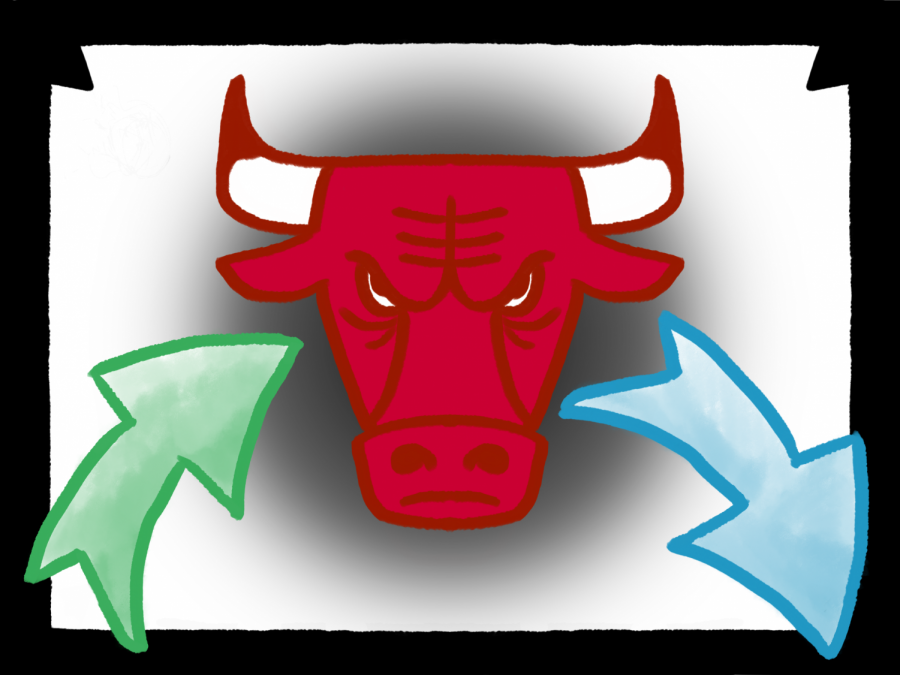 Bulls' trades forecast a bright future