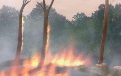 The burning of the Amazon