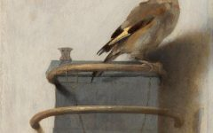 'The Goldfinch' flops rather than flies